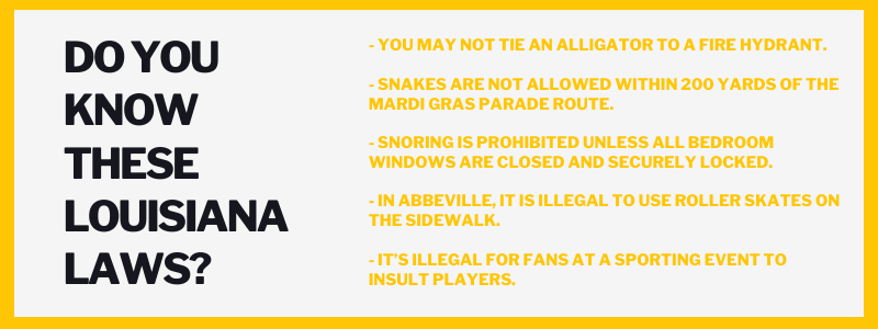 Do you know these louisiana laws? You may not tie an alligator to a fire hydrant. - Snakes are not allowed within 200 yards of the Mardi Gras parade route. - Snoring is prohibited unless all bedroom windows are closed and securely locked. - In Abbeville, it is illegal to use roller skates on the sidewalk. - It's illegal for fans at a sporting event to insult players.